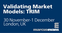 Validating Market Models: TRIM