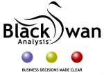 Black Swan Analysis limited