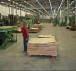 TAKEOVERS: Latvijas Finieris Buys a Bankrupt Estonian Producer
