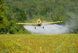 New Euromonitor Reports on Insecticides Markets Recently Published by MarketPublishers.com