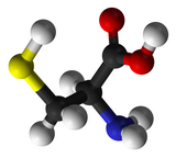 China L-Cysteine Market Research Report Now Available at MarketPublishers.com