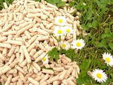 World Biomass Pellet Market Examined in New GlobalData Report Now Available at MarketPublishers.com