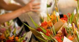 US Florist Industry Examined by Sundale Research in New Report Now Available at MarketPublishers.com