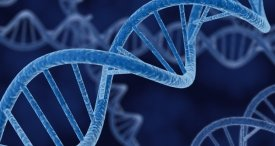 DNA Sequencing Market Examined by Biopharm Reports in Topical Research Study Available at MarketPublishers.com