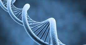 Global Gene Therapy Market Discussed in New Kuick Research Report Now Available at MarketPublishers.com