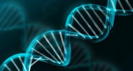 World Genotyping Market Analysed by M&M in New Research Study Published at MarketPublishers.com