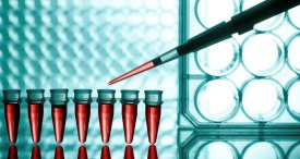 Global Molecular Diagnostics Market Scrutinized in Koncept Analytics Report Recently Published at MarketPublishers.com