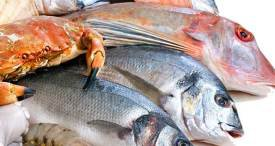 World Seafood Market Examined by Daedal Research in Comprehensive Study Now Available at MarketPublishers.com