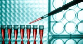 New Molecular Diagnostics Market Research Studies by VPGMarketResearch.com Now Available at MarketPublishers.com