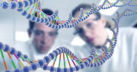 Global DNA Sequencing Market Performance Canvassed by Koncept Analytics in Topical Research Report Available at MarketPublishers.com