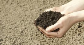 Chinese Soil Treatment Sector Analysed by Ken Research in Topical Report Available at MarketPublishers.com