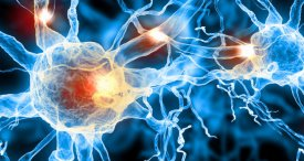 World Neuromodulation Market Assessed & Forecast in New RNCOS Study Available at MarketPublishers.com