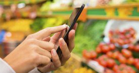 India Online Grocery Market Scrutinised in New 6Wresearch Report Now Available at MarketPublishers.com