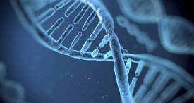World Gene Therapy Market Canvassed in New RNCOS Report Recently Published at MarketPublishers.com