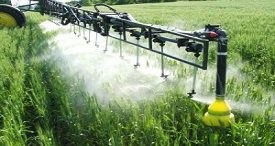 China Triazole Fungicides Market Analysed in New WBISS Consulting Report Available at MarketPublishers.com