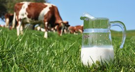 India & China Dairy Market Assessed by SRI in New Cutting-edge Research Report Recently Published at MarketPublishers.com