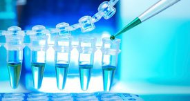Peptide Therapeutics Market Scenario Canvassed by PNS Pharma in New Research Report Recently Published at MarketPublishers.com