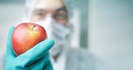 GM Food Safety Testing Sector to Post Around 8% CAGR, Projects M&M in Its New Report Published at MarketPublishers.com