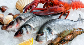 New Fish & Seafood Market Studies by Canadean Now Available at MarketPublishers.com
