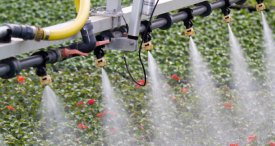 Water Soluble Fertilizers Market to Grow at a 5% CAGR through 2021, According to New Report by TechSci Research Now Available at MarketPublishers.com