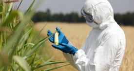 Crop Protection Chemicals Hold Maximum Deal Share, According to M&M Research Report Published at MarketPublishers.com