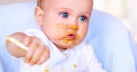 Food Retailers Dominate Baby Food Sales in Portugal, Says Canadean in Its Report Available at MarketPublishers.com