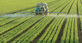 Chinese Glyphosate Supply to Reduce in Short Run, According to CCM Report Available at MarketPublishers.com