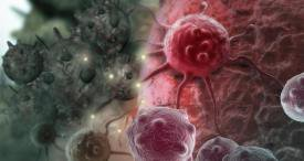 Cancer Immunotoxins Market Experiences Sustainable Development, According to New Report by Kuick Research Available at MarketPublishers.com