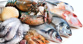 World Fish & Seafood Market to Grow through 2020, According to Report by MarketLine Recently Added at MarketPublishers.com