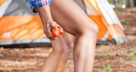 Mosquito Repellents Market Poised for Notable Growth, Says Allied Market Research in New Report Available at MarketPublishers.com