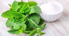 China Dominates Stevia Rebaudiana Extract Industry, Says CRI in Its Report Available at MarketPublishers.com