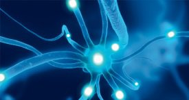 Global Neuromodulation Market to Surpass USD 5 Bn Mark by 2021, Forecasts iGATE Research in New Report Available at MarketPublishers.com