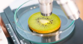 Food Safety Testing Market to See Further Growth through 2021, Forecasts iGATE Research in Its In-demand Report Available at MarketPublishers.com