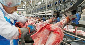 Meat Processing Equipment Market Surpassed the USD 9.6 Bn Mark in 2016, States M&M in Its New Report Published at MarketPublishers.com