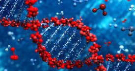 Next Generation Sequencing Market to See Double-Digit CAGR to 2022, Forecasts IQ4I in Its Discounted Report Available at MarketPublishers.com