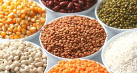 India Dominates Pulses Market, Says IMARC Group in New Report Available at MarketPublishers.com