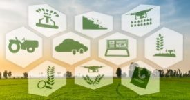 Global Smart Agriculture Market to Hit USD 30 Bn Mark through 2025, States The Insight Partners in Its New Publication Added at MarketPublishers.com