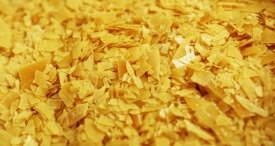 Global Carnauba Wax Market Analysed & Forecast by GlobalInfoResearch in Its Cutting-Edge Report Now Available at MarketPublishers.com