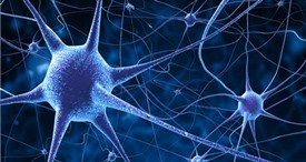 Global Neural Network Market to Amount to USD 45.8 Bn by 2023, Expects KBV Research in Its New Study Published at MarketPublishers.com