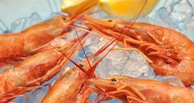 Frozen Prawns Remained Top Item of Export in India in 2016-2017, States Bonafide in Its Discounted Report Published at MarketPublishers.com