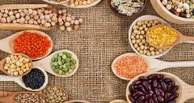 World Plant Based Protein Market to See Steady Growth to 2022, Predicts Meticulous Research in Its New Report Now Available at MarketPublishers.com