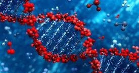 North America Leads World Polymerase Chain Reaction Market, States Industry Experts in Its Study Now Available at MarketPublishers.com