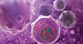 Global Cancer CDK Inhibitors Market Has a Promising Future, Says Kuick Research in Its New Research Report Recently Added at MarketPublishers.com