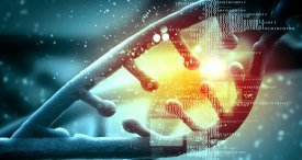 Global NGS Informatics Market to See Exponential Growth to 2022, Says Meticulous Research in Its Discounted Study Available at MarketPublishers.com