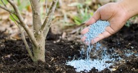 Soil Treatment Market to Gain Good Momentum to 2023, States PBI in Its In-demand Research Report Recently Added at MarketPublishers.com