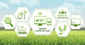 Top 3 Technologies Shaping Smart Agriculture Market