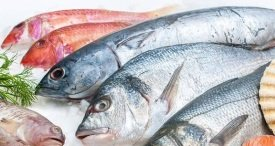 Global Fish Market: Key Facts & Statistics to Know in 2018