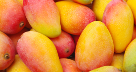 Three Largest Mango Producing Countries