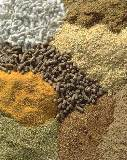 Mergers, Acquisitions and Reorganizations Projected for the Feed Additives Market in China