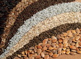 """""""Global Seeds Market Report: 2011 Edition"""" Now Available at MarketPublishers.com"""